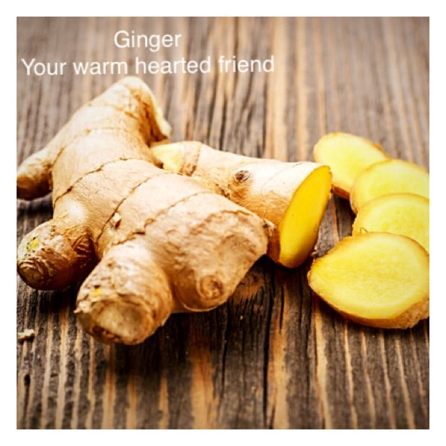 Ginger –  Herbal Relief for Nausea, Travel Sickness, Coughs and Colds